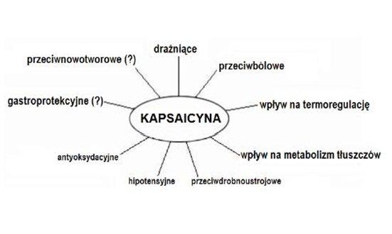 Kapsaicyna na raka