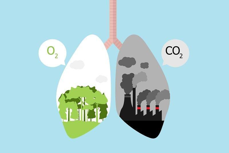 smog powoduje raka