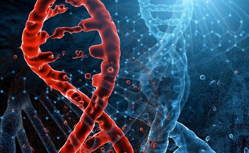 genetyczne podłoże raka