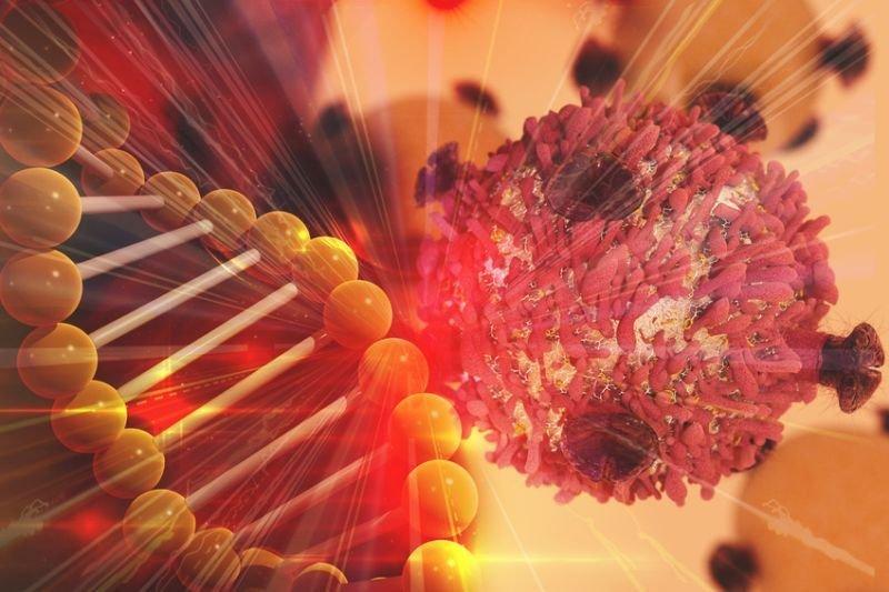 DNA genetyka