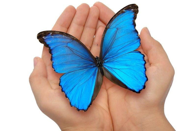 O życiu z rakiem jajnika – Barbara Górska, Stowarzyszenie Niebieski Motyl